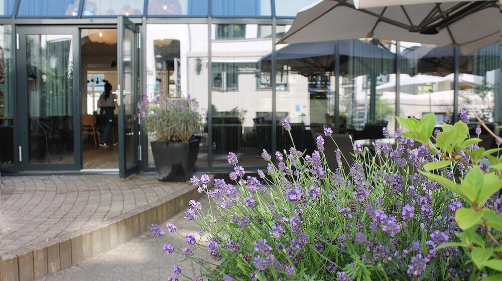 courtyard-1500x988-2.jpg